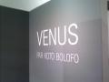 Bolofo_Venus