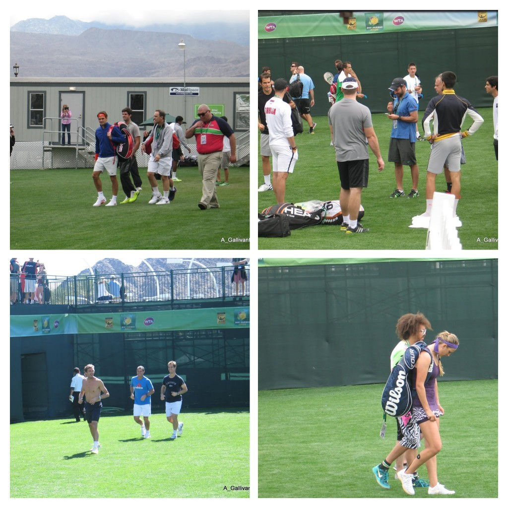 Tennis Players Galore (from 2013)